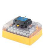 Ovation-28-or-56-ECO-Digital Egg Incubators  - $369.99 - $469.99