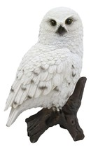 Realistic Snowy Tundra White Owl Bird Perching On Tree Branch Statue 6.5... - $29.99