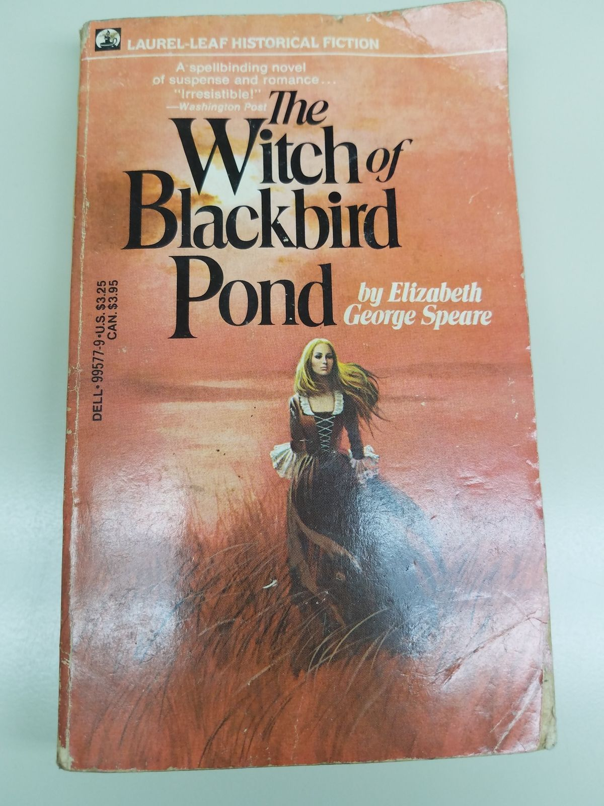 a literary analysis of the witch of blackbird pond by elizabeth george spear