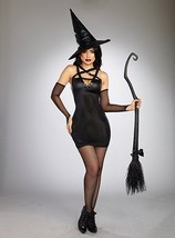 Dreamgirl Wicked Witch Broomstick Black Adult Womens Halloween Costume 1... - $47.99+