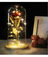 Enchanted Forever Rose Flower In Glass LED Light Christmas Decoration - $36.00+