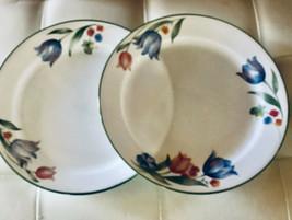 "Corelle Corning Fresh Cut 10-1/4""  Tulip Design Dinner Plates (2) Corning - $26.77"
