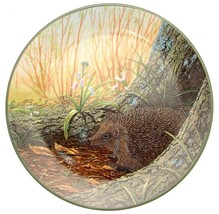 Royal Doulton The Wary Hedgehog Rollinsons Portraits of Nature CP2827 - $38.14