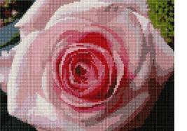 Pepita Pink Rose Needlepoint Kit - $69.05