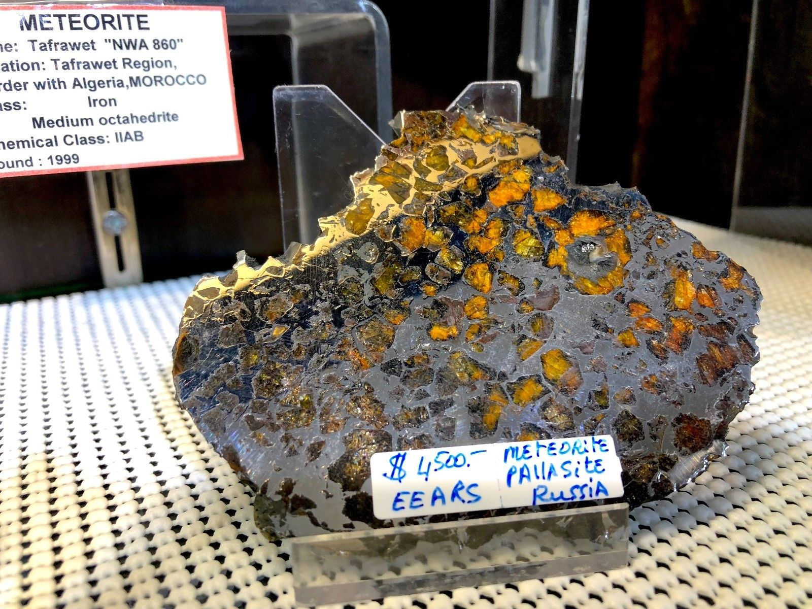 METEORITE SLICE PALLASITE PIRATE GOLD COINS TREASURES OF SPACE METEOR ARTIFACT