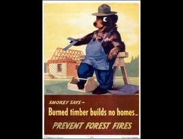 SMOKEY BEAR POSTER | 24 x 36 INCH | SMOKEY SAYS - $18.99