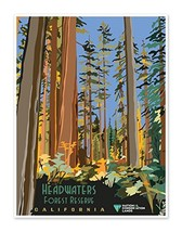 Headwaters Forest Reserve California - US National Conservation Land Art Print P - $14.95