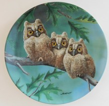 Knowles Threes Company Long Eared Owls Plate Joe Thornbrugh Baby 7 North... - $29.70