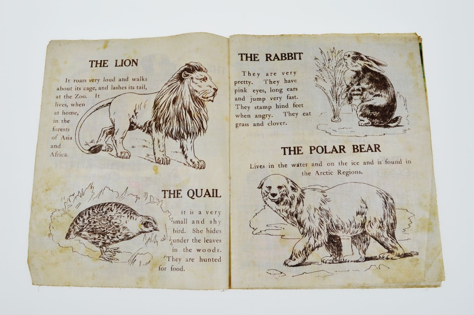 Vintage Graham and Matlack Animals of All Lands Children's Book on Linen