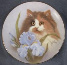 Summer Sunshine Collector Plate Petals and Purrs Bob Harrison Kitten Cat  - $27.95