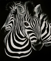 Animal illustration Art oil painting printed on canvas home decor zebra  - $32.99