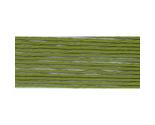 S469 avocado green thumb155 crop