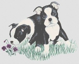 Boston Terrier Puppies cross stitch chart White Willow Stitching - $7.65