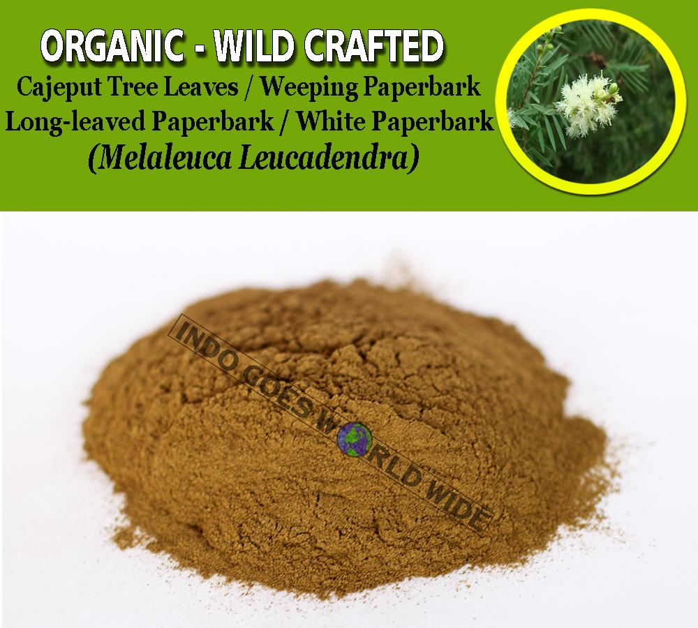 POWDER Cajeput Tree Leaves Weeping White Paperbark Melaleuca Leucadendra Organic