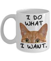 I Do What I Want Tabby Cat Mug - $15.99