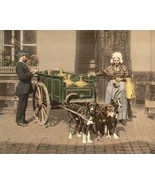 Flemish woman deliverying milk in cart pulled by dogs Antwerp New 8x10 P... - $8.81
