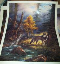 Rudi Reichardt Timber Wolf Poster Print 24 x 32 VGC unframed - $13.00