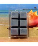 Sea Breeze Breakaway Clamshell Soy Wax Tart Melts - $3.50