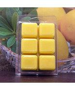 Lemon Pucker Breakaway Clamshell Soy Wax Tart Melts - $3.50