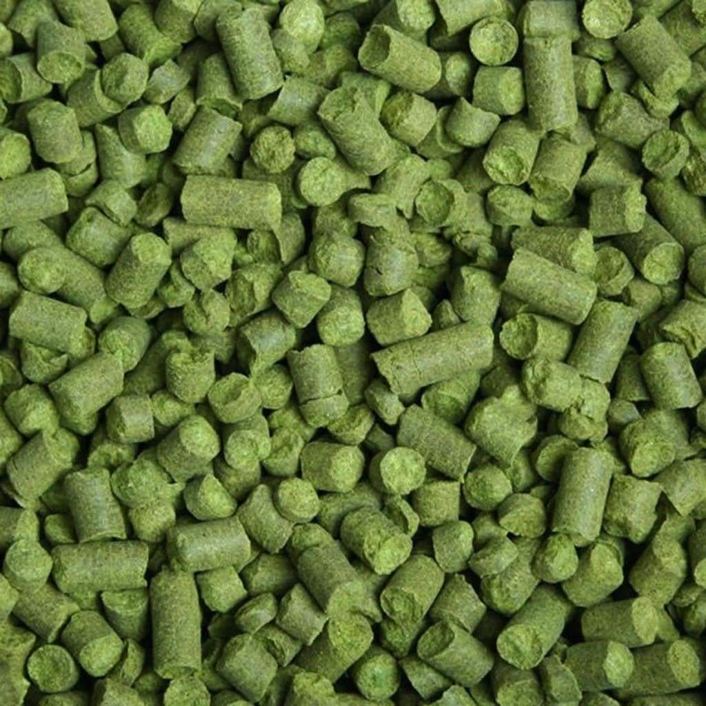 Challenger hop pellets uk 1 oz bm 377