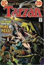 Tarzan Comic Book #215 DC Comics 1972 VERY GOOD+ - $7.14