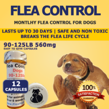 560MG FLEA CONTROL For DOGS 90-125 Pounds 12 TREATMENTS EACH LASTS A MONTH  - €11,07 EUR