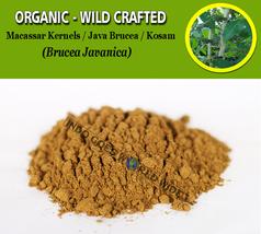 POWDER Macassar Kernels Java Brucea Kosam Brucea Javanica Organic Wild C... - $8.25+