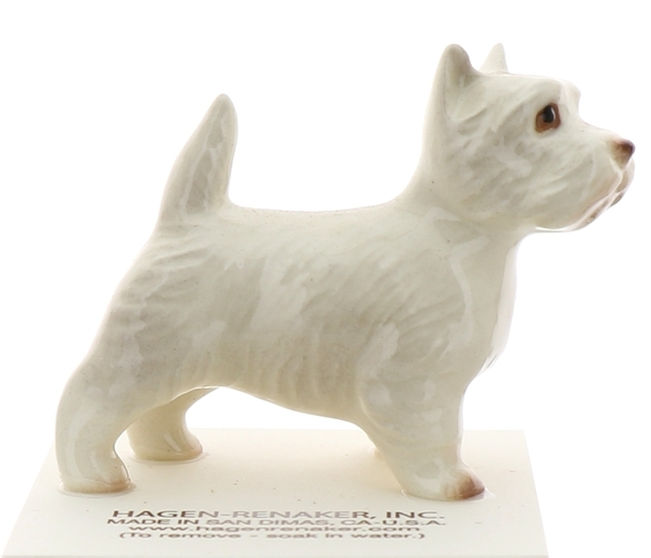 West highland terrier1