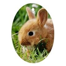 Jungle Animal Rabbit (Oval) Ornaments Decoration Christmas - $3.99