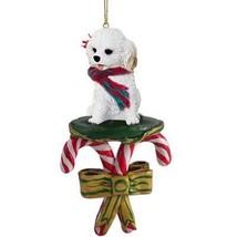 Conversation Concepts Cockapoo White Candy Cane Ornament - $15.99