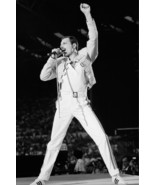 Queen Freddie Mercury In Concert 18x24 Poster - $23.99