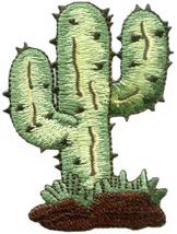 Cactus desert flower southwest embroidered applique iron-on patch new S-... - £2.24 GBP
