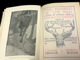 1902 The Kindred of the Wild  A Book of Animal Life by Charles G. D. Roberts image 3