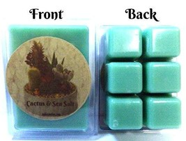 Cactus & Sea Salt Pack of 3.2oz Soy Wax Tarts (6 Cubes Per Pack) Wax Melts - €3,34 EUR