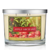 Apple Orchard Candle - $19.99