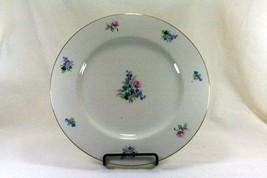 Theodore Haviland Ellwood Dinner Plate - $22.86