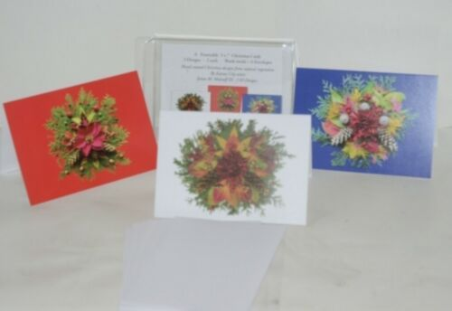 Natural Beauty Frameable 5X7 Christmas Card 3 Designs Package 6