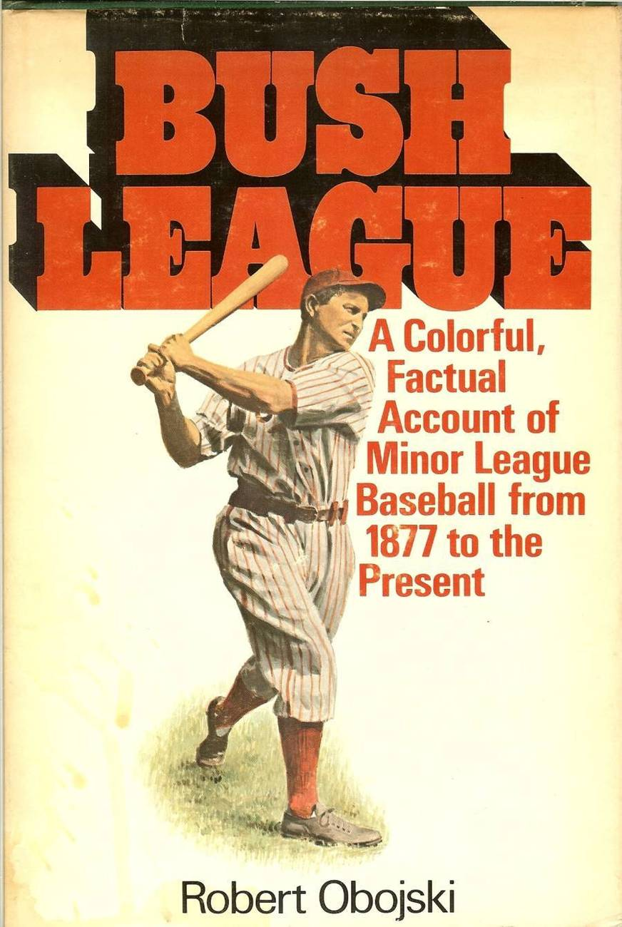 bush league,minor league baseball book 1877 robert obojski first edition