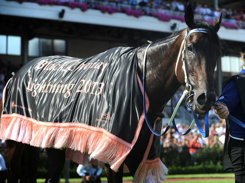 DVD - BLACK CAVIAR's 2013 Comeback - 23rd and 24th STRAIGHT VICTORY!!