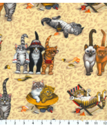 BTY Cute CATS Kittens on BEACH Print 100% Cotton Quilt Craft Fabric by t... - $10.00