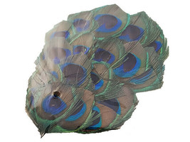 Midwest Design Touch of Nature Peacock Feathers #PO910001-D image 2