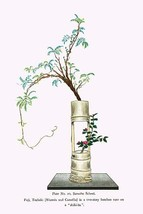 Fuji & Tsubaki (Wisteria and Camellia) in a two story Bamboo Vase by Josiah Cond - $19.99+