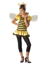 Tween Girls Honey Bee Halloween Costume Medium 10-12 InCharacter Bumble Bee - £12.17 GBP