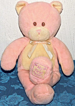 "13"" Toys R Us Pink My First Bear Teddy Plush 2010 Stuffed Animal Lovey T... - $17.46"