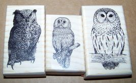 Lot of 3 Brand New Mounted Rubber Stamps - OWLS - $12.99
