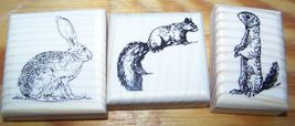 Lot Of 3 New Mounted Rubber Stamps   Animal Lot   Rabbit Squirrel Ground Hog - $9.99