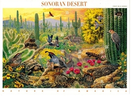 US Scott 3293 Sonoran Desert Full Sheet of Ten 33 Cent Stamps by USPS - $7.25