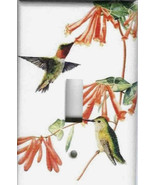 Hummingbirds thumbtall