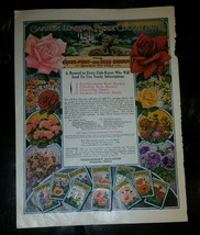Vintage 1929 Rose Plant and Seed Garden ad from Needlecraft Magazine  - $17.65