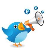 Twitter social media marketing thumbtall